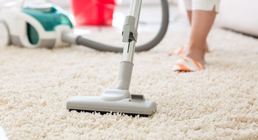 Cómo limpiar una casa con mascotas y quitar el mal de orín ...